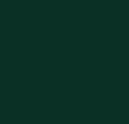 4174 conifer